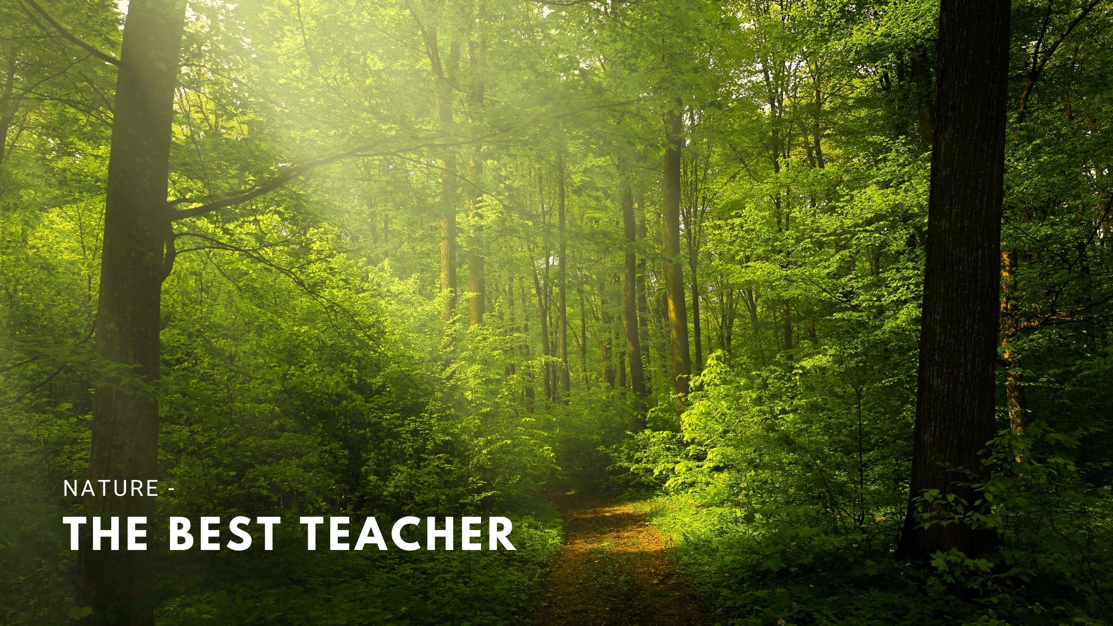 Nature - The Best Teacher for Mankind